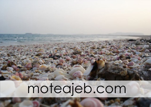 jazire kochak naz da gheshm 3 - جزیره کوچک ناز در قشم
