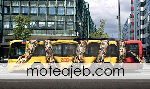 autobos mari - اتوبوس های عجیب