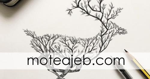 heyvanat derakhti 1 - حیوانات درختی