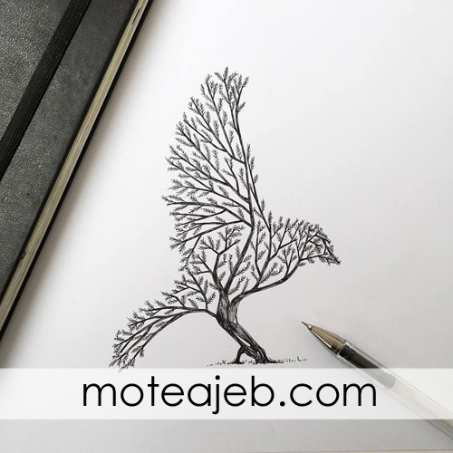 heyvanat derakhti 4 - حیوانات درختی