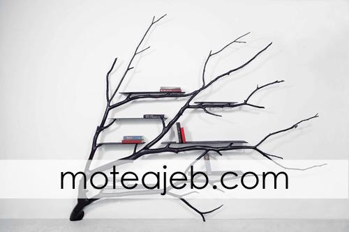 ketabkhane az shakhe derakht 2 - کتابخانه ای از شاخه های درخت
