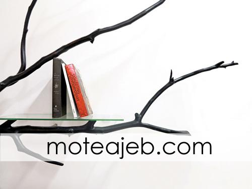کتابخانه ای از شاخه درخت