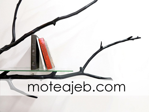 ketabkhane az shakhe derakht 3 - کتابخانه ای از شاخه های درخت