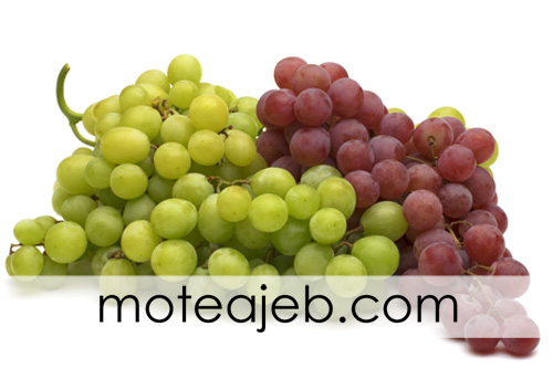 mive makhsos varzeshkaran - میوه مخصوص برای ورزشکاران